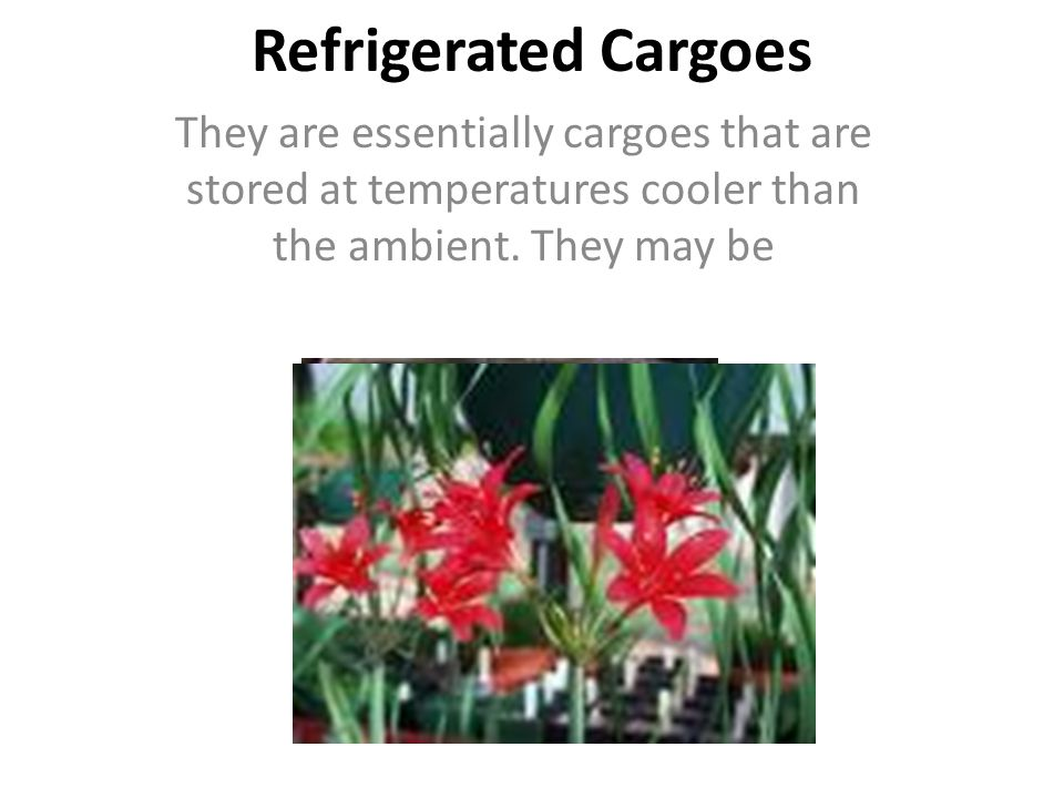 They are essentially cargoes that are stored at temperatures cooler than the ambient. They may be Refrigerated Cargoes