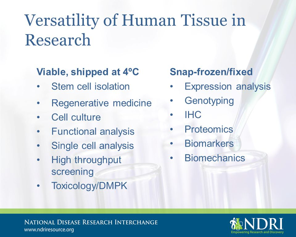 Versatility of Human Tissue in Research Viable, shipped at 4ºC Stem cell isolation Regenerative medicine Cell culture Functional analysis Single cell analysis High throughput screening Toxicology/DMPK Snap-frozen/fixed Expression analysis Genotyping IHC Proteomics Biomarkers Biomechanics