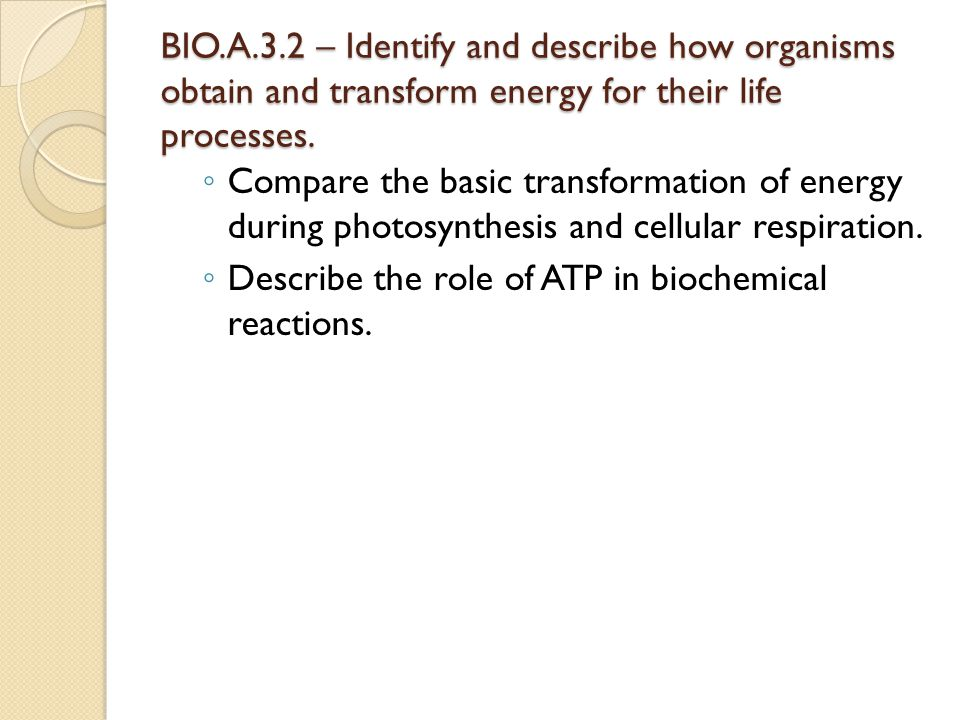 BIO.A.3.2 – Identify and describe how organisms obtain and transform energy for their life processes. ◦ Compare the basic transformation of energy dur