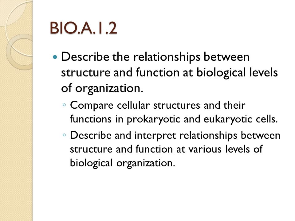 BIO.A.1.2 Describe the relationships between structure and function at biological levels of organization.