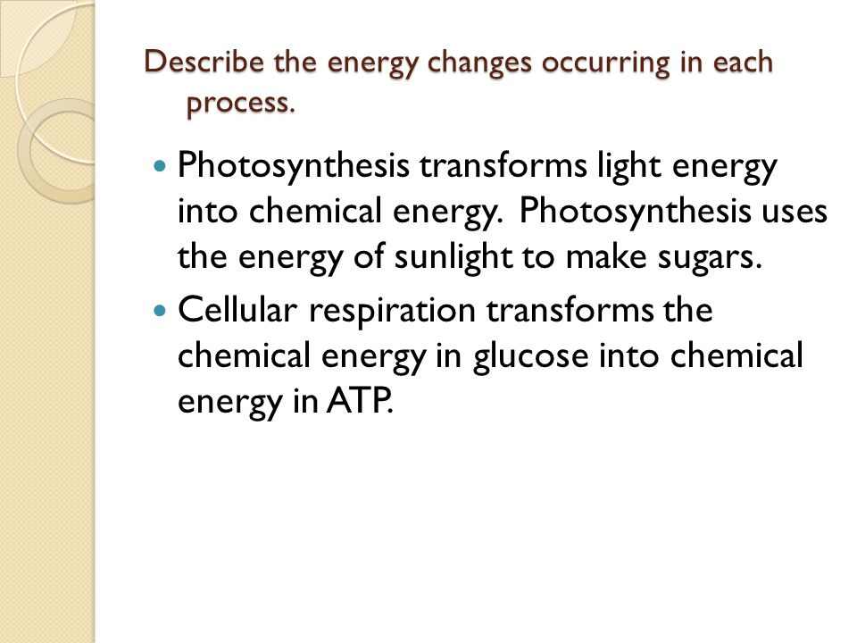 Describe the energy changes occurring in each process.