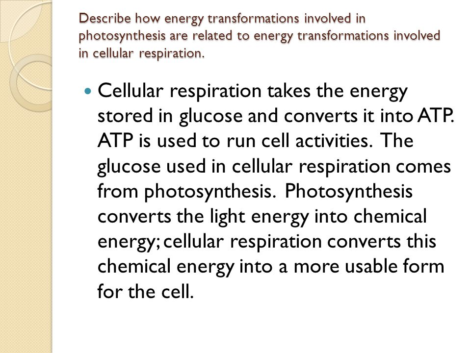 Describe how energy transformations involved in photosynthesis are related to energy transformations involved in cellular respiration. Cellular respir
