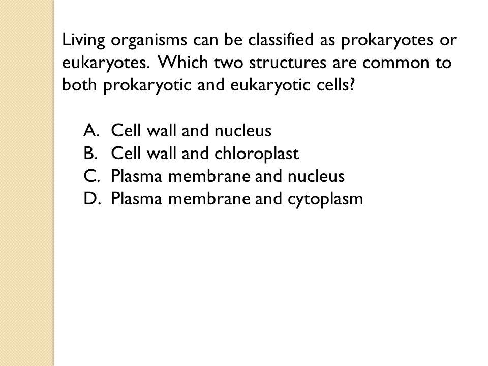 Living organisms can be classified as prokaryotes or eukaryotes.