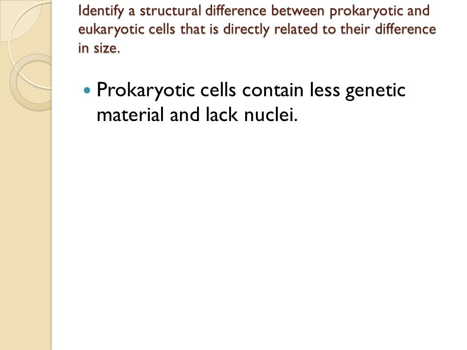 Identify a structural difference between prokaryotic and eukaryotic cells that is directly related to their difference in size. Prokaryotic cells cont