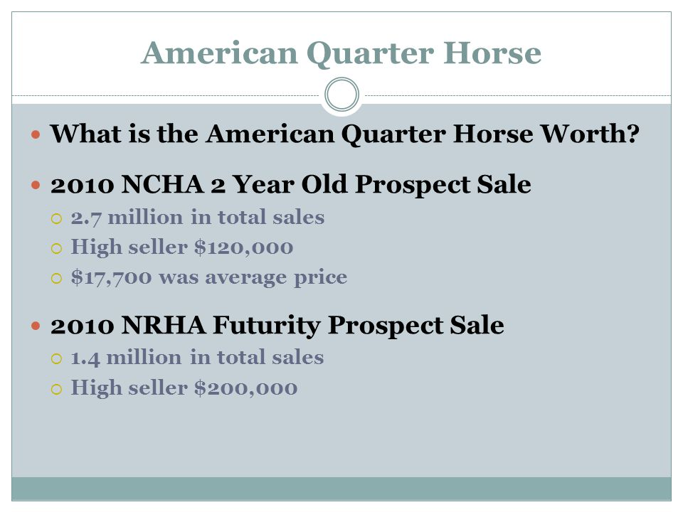 American Quarter Horse What is the American Quarter Horse Worth.