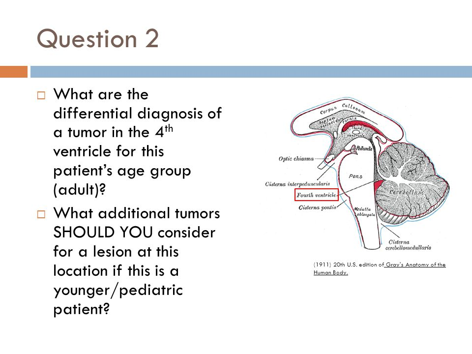 Question 2  What are the differential diagnosis of a tumor in the 4 th ventricle for this patient's age group (adult)?  What additional tumors SHOUL