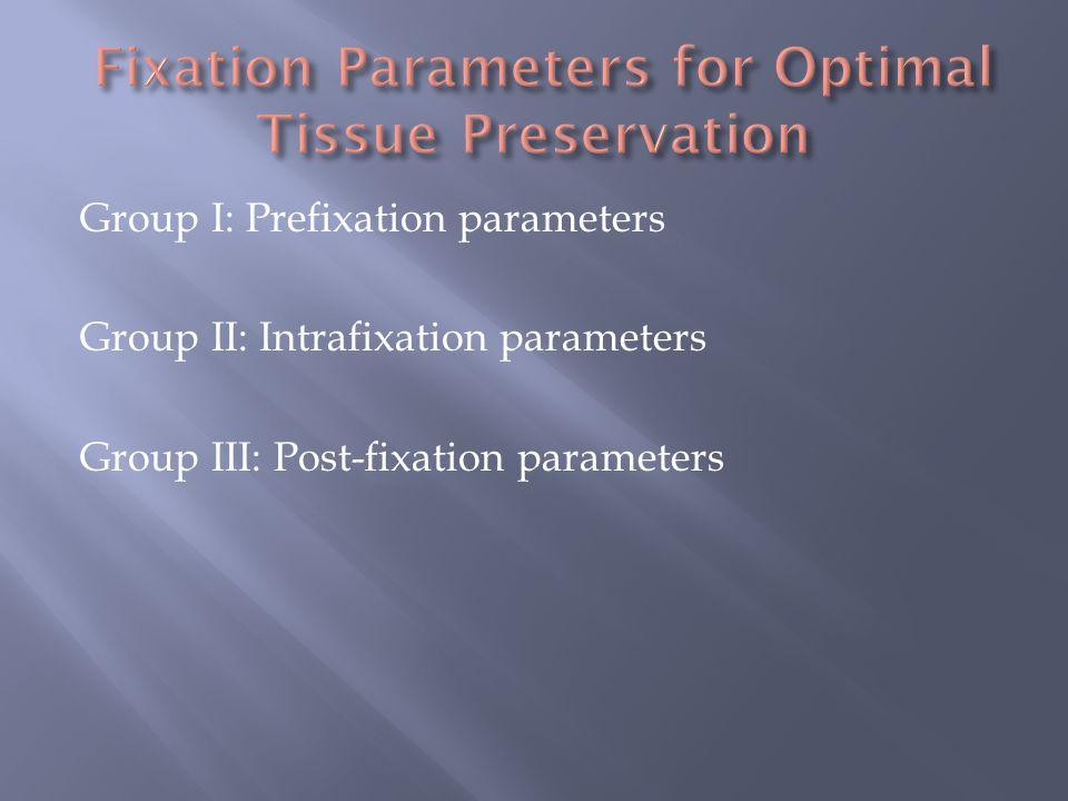 Group I: Prefixation parameters Group II: Intrafixation parameters Group III: Post-fixation parameters