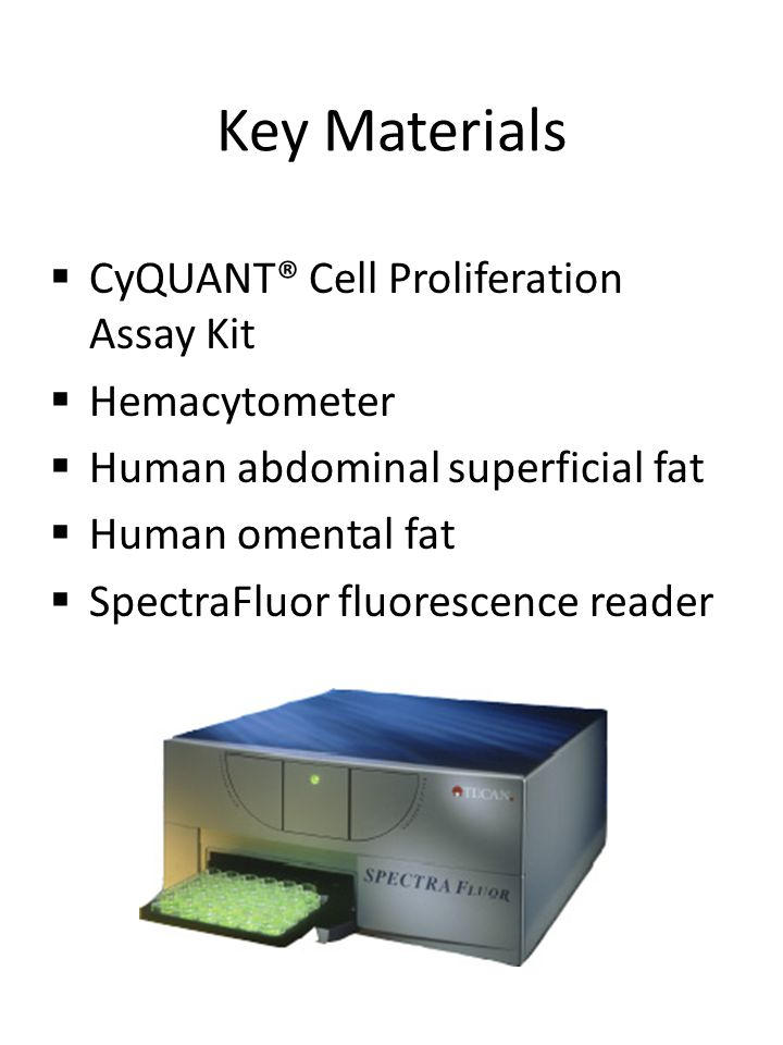 Key Materials  CyQUANT® Cell Proliferation Assay Kit  Hemacytometer  Human abdominal superficial fat  Human omental fat  SpectraFluor fluorescenc