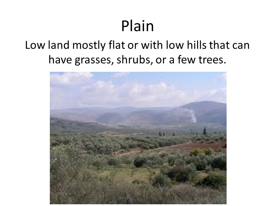 Plain Low land mostly flat or with low hills that can have grasses, shrubs, or a few trees.