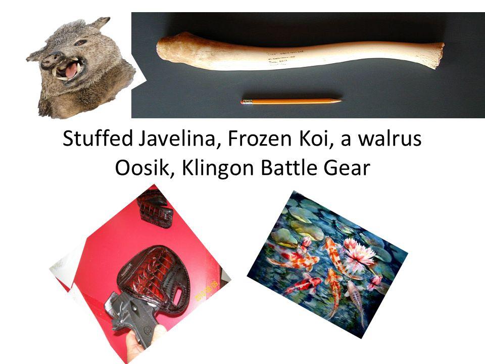 Stuffed Javelina, Frozen Koi, a walrus Oosik, Klingon Battle Gear