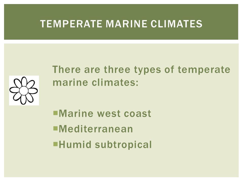 There are three types of temperate marine climates:  Marine west coast  Mediterranean  Humid subtropical TEMPERATE MARINE CLIMATES