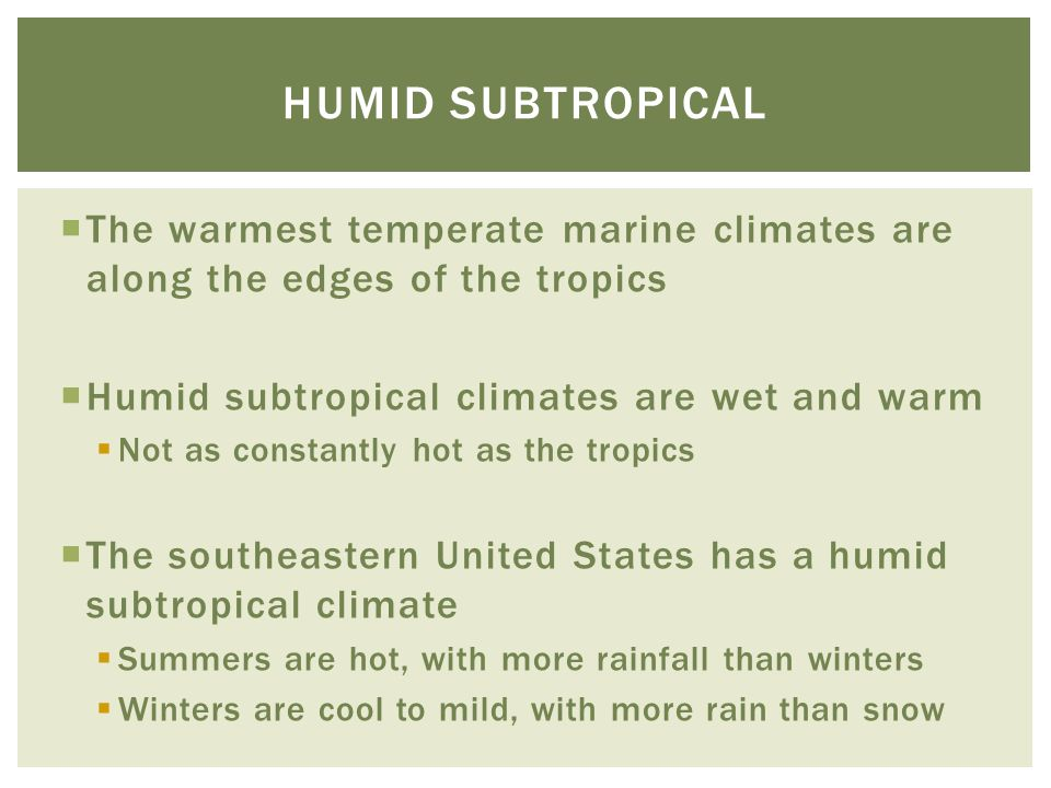  The warmest temperate marine climates are along the edges of the tropics  Humid subtropical climates are wet and warm  Not as constantly hot as th