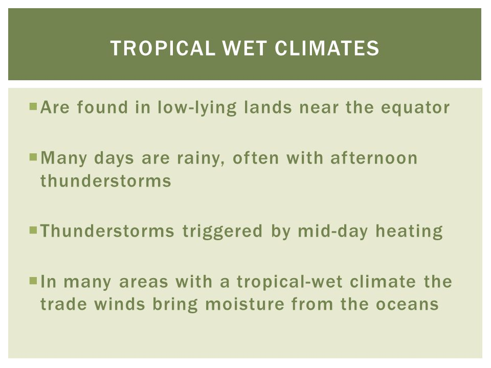  Are found in low-lying lands near the equator  Many days are rainy, often with afternoon thunderstorms  Thunderstorms triggered by mid-day heating