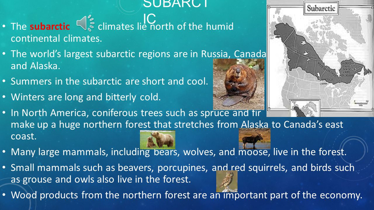 TEMPERATE CONTINENTAL CLIMATES Why do continental climates occur only in the Northern Hemisphere? The parts of continents in the Southern Hemisphere s