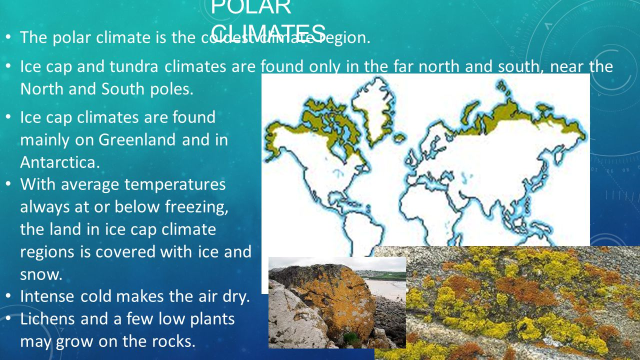 SUBARCT IC The subarctic climates lie north of the humid continental climates. The world's largest subarctic regions are in Russia, Canada, and Alaska