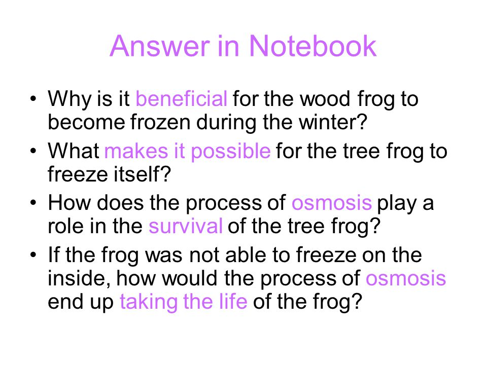 Answer in Notebook Why is it beneficial for the wood frog to become frozen during the winter? What makes it possible for the tree frog to freeze itsel