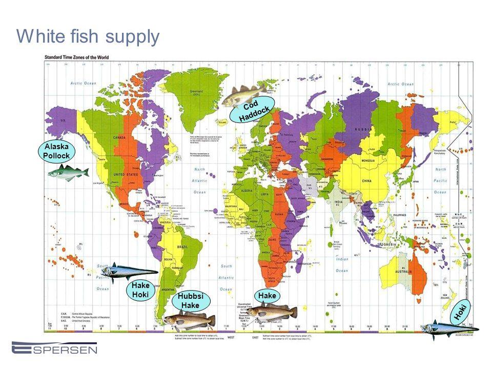 White fish supply Cod Haddock Hake Hoki Hubbsi Hake Alaska Pollock Hake Hoki