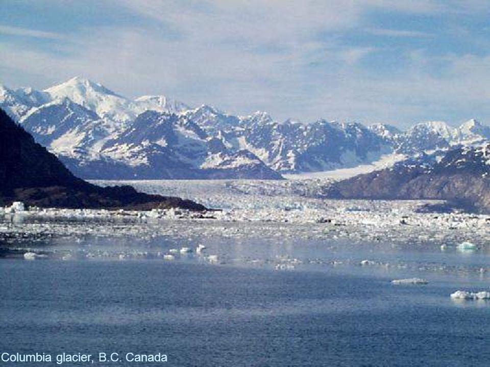 Columbia glacier, B.C. Canada
