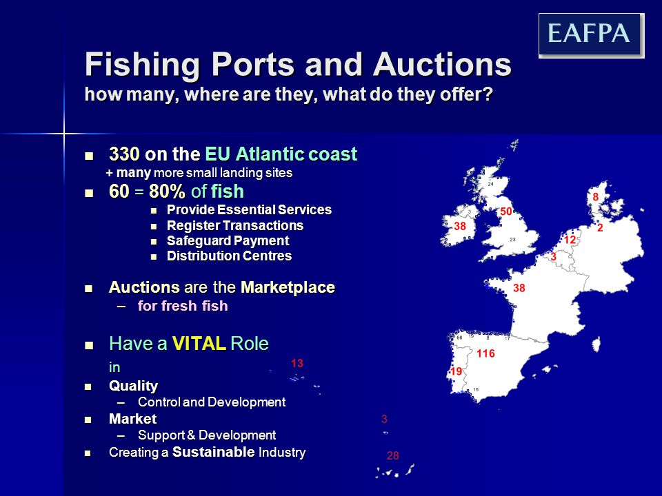 Raising Catch Value through Quality Development Auctions must play a central role Auctions must play a central role Aim for a significant part of EU catch Aim for a significant part of EU catch –Fresh –Sustainable –Traceable –Deliverable Target upper quartile of fish consumption Target upper quartile of fish consumption Have a practical and inclusive eco-label Have a practical and inclusive eco-label Develop traceability concepts Develop traceability concepts Coordinate markets and supply Coordinate markets and supply Fresh and Frozen Imports EU Farmed Farmed Imports TEXT EU captured Fresh and Frozen Imports