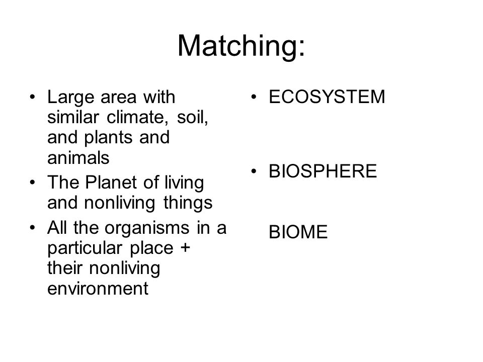 Matching: Large area with similar climate, soil, and plants and animals The Planet of living and nonliving things All the organisms in a particular pl