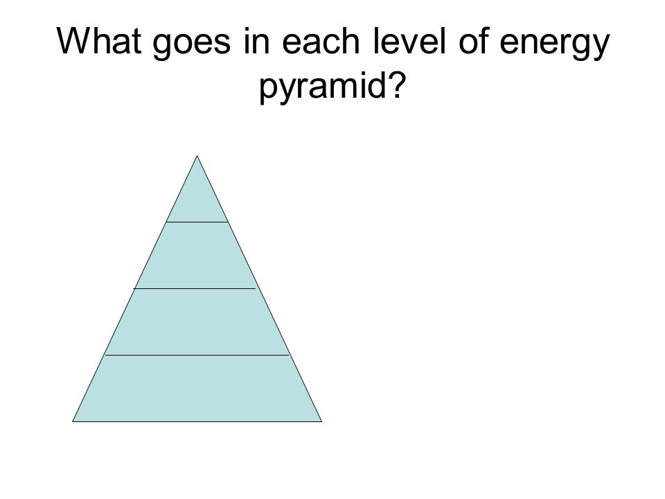 What goes in each level of energy pyramid?