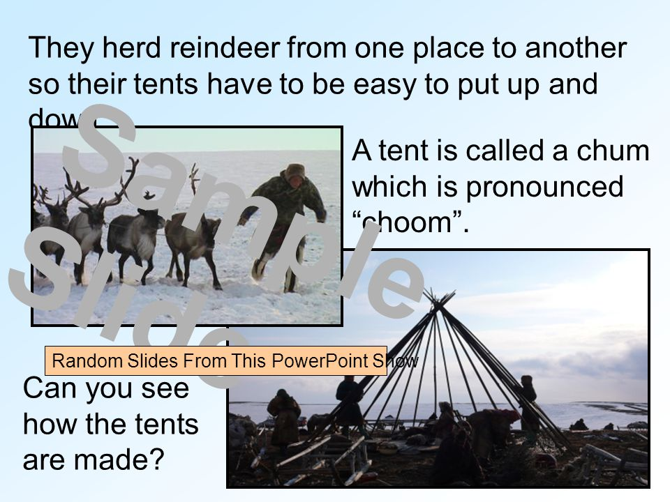 They herd reindeer from one place to another so their tents have to be easy to put up and down.