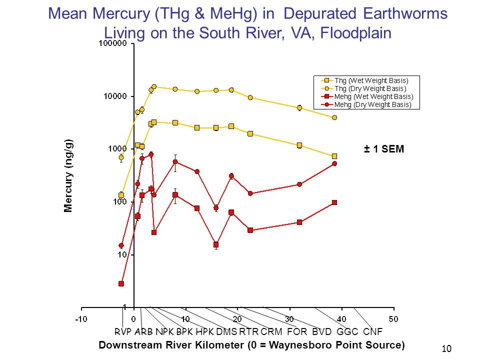 10 RVP ARB NPK BPK HPK DMS RTR CRM FOR BVD GGC CNF Downstream River Kilometer (0 = Waynesboro Point Source) Mean Mercury (THg & MeHg) in Depurated Earthworms Living on the South River, VA, Floodplain ± 1 SEM
