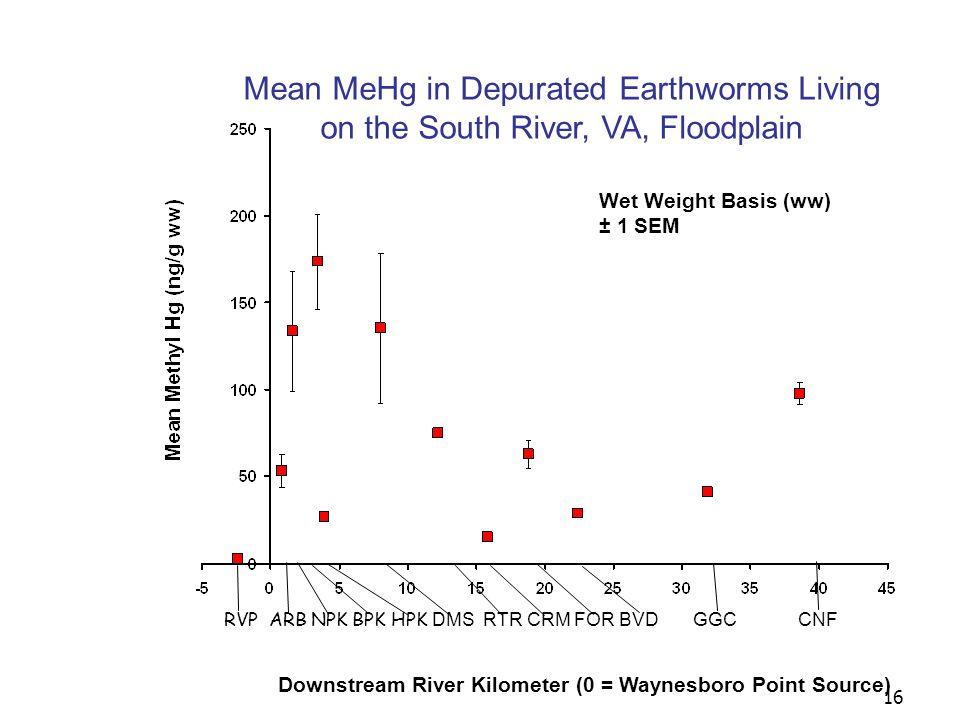 16 Mean MeHg in Depurated Earthworms Living on the South River, VA, Floodplain Downstream River Kilometer (0 = Waynesboro Point Source) RVP ARB NPK BPK HPK DMS RTR CRM FOR BVD GGC CNF Wet Weight Basis (ww) ± 1 SEM