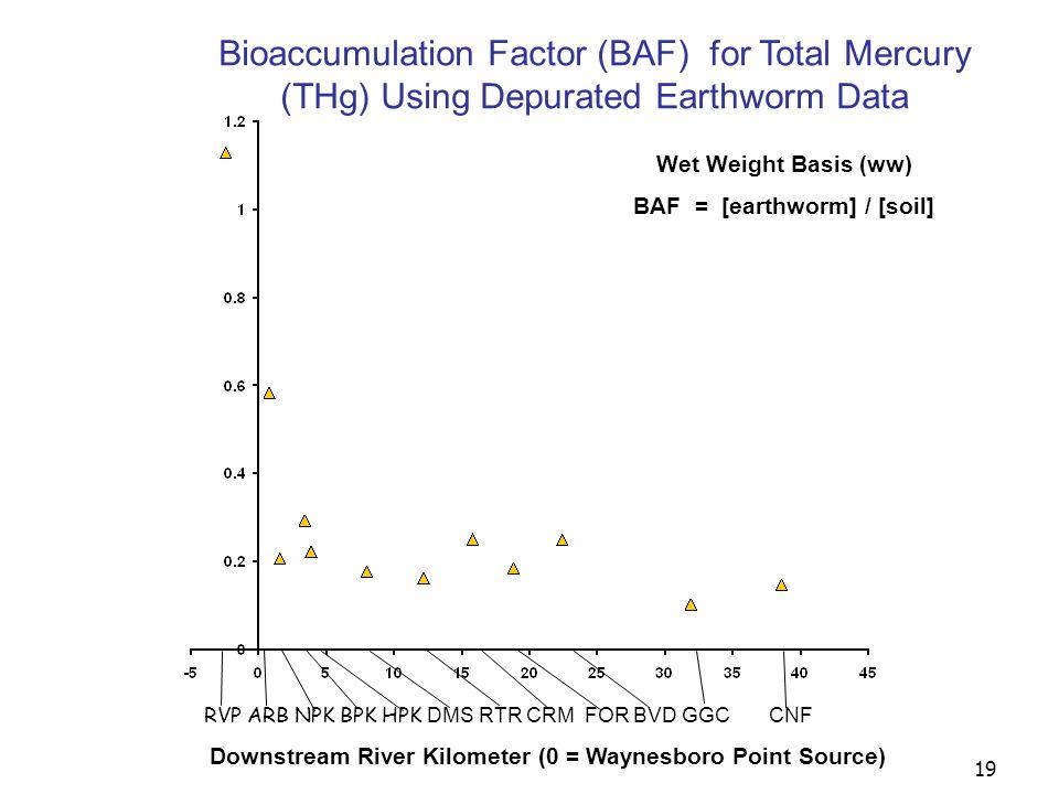 19 Downstream River Kilometer (0 = Waynesboro Point Source) RVP ARB NPK BPK HPK DMS RTR CRM FOR BVD GGC CNF Wet Weight Basis (ww) BAF = [earthworm] / [soil] Bioaccumulation Factor (BAF) for Total Mercury (THg) Using Depurated Earthworm Data