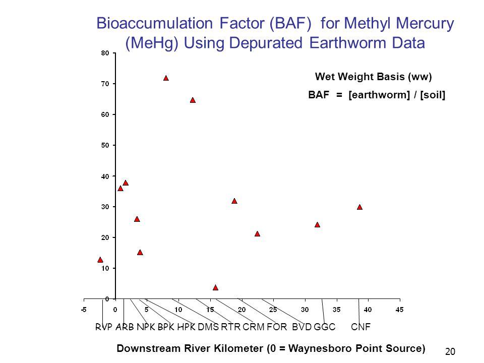20 Downstream River Kilometer (0 = Waynesboro Point Source) RVP ARB NPK BPK HPK DMS RTR CRM FOR BVD GGC CNF Wet Weight Basis (ww) Bioaccumulation Factor (BAF) for Methyl Mercury (MeHg) Using Depurated Earthworm Data BAF = [earthworm] / [soil]