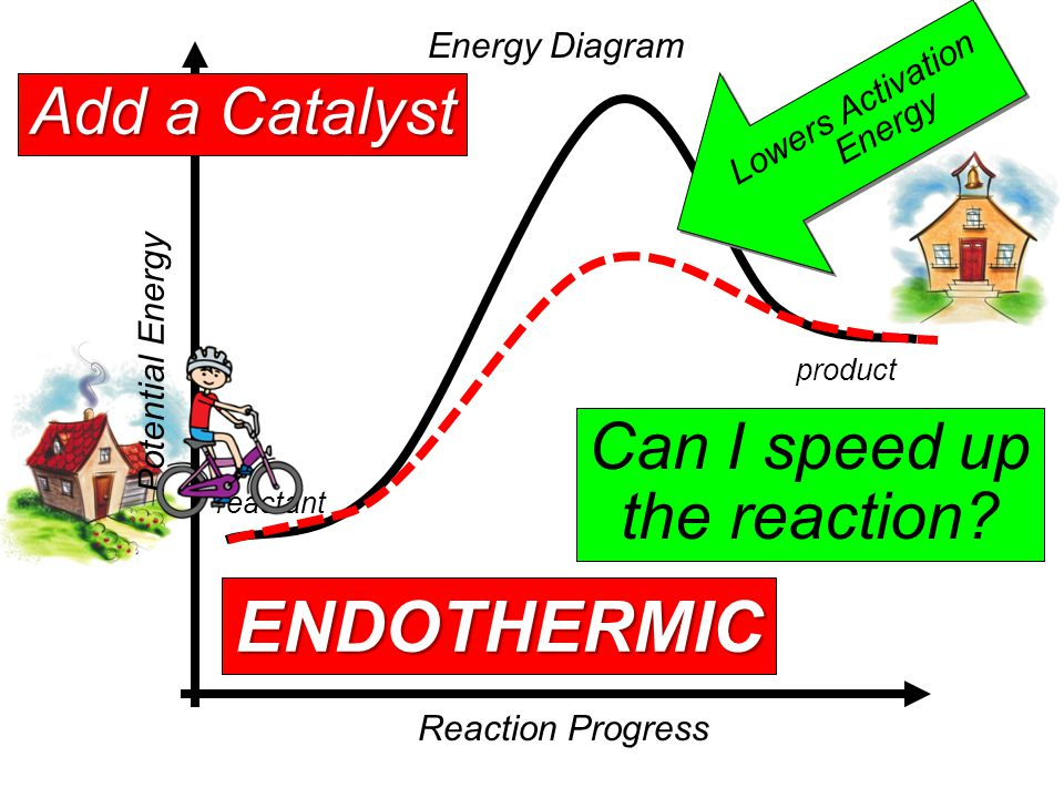 Energy Diagram Reaction Progress Potential Energy reactant product EXOTHERMIC Can I speed up the reaction.