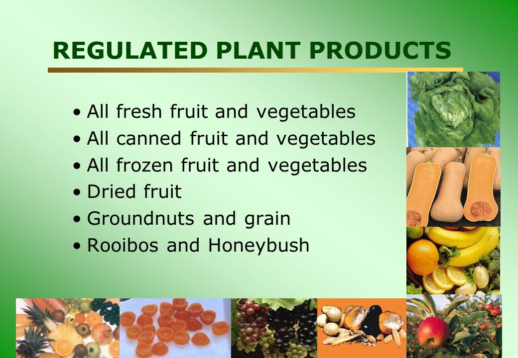 DEPARTMENT: AGRICULTURE REGULATED PLANT PRODUCTS All fresh fruit and vegetables All canned fruit and vegetables All frozen fruit and vegetables Dried fruit Groundnuts and grain Rooibos and Honeybush
