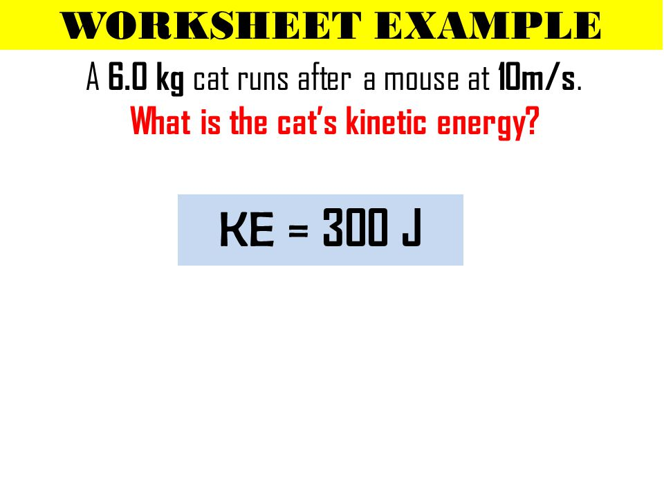 WORKSHEET EXAMPLE A 6.0 kg cat runs after a mouse at 10m/s.