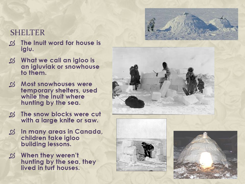 SHELTER  The Inuit word for house is iglu.  What we call an igloo is an igluviak or snowhouse to them.  Most snowhouses were temporary shelters, us