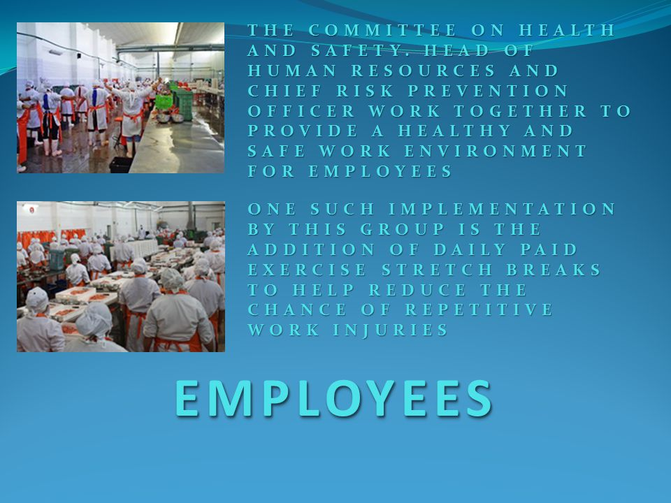 EMPLOYEESEMPLOYEES ONE SUCH IMPLEMENTATION BY THIS GROUP IS THE ADDITION OF DAILY PAID EXERCISE STRETCH BREAKS TO HELP REDUCE THE CHANCE OF REPETITIVE WORK INJURIES THE COMMITTEE ON HEALTH AND SAFETY.