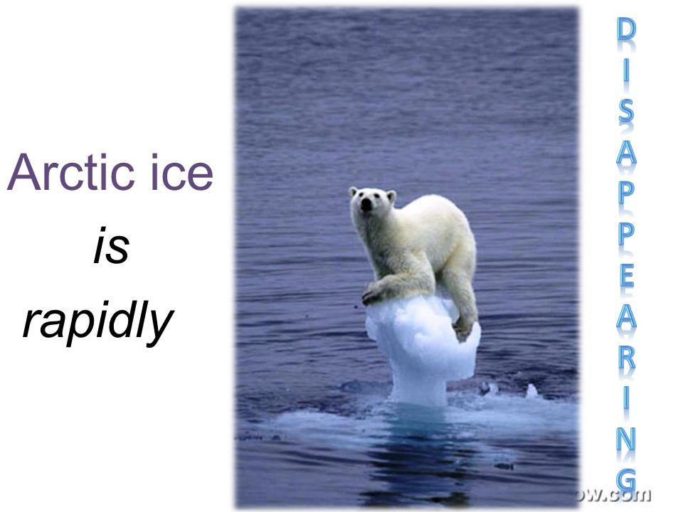 Arctic ice is rapidly
