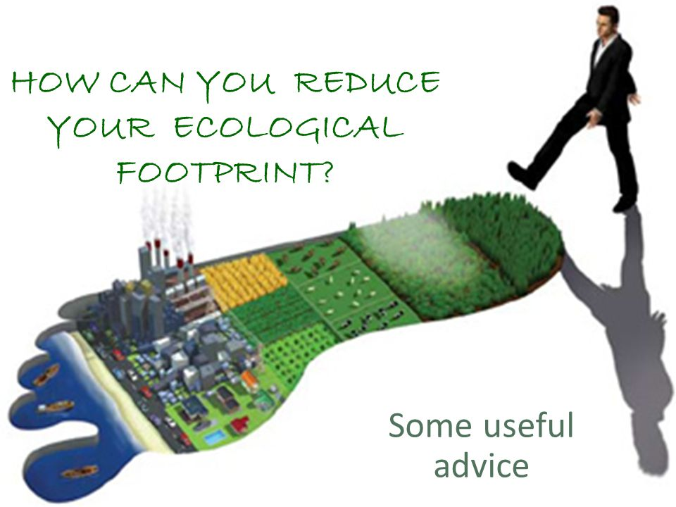 HOW CAN YOU REDUCE YOUR ECOLOGICAL FOOTPRINT? Some useful advice
