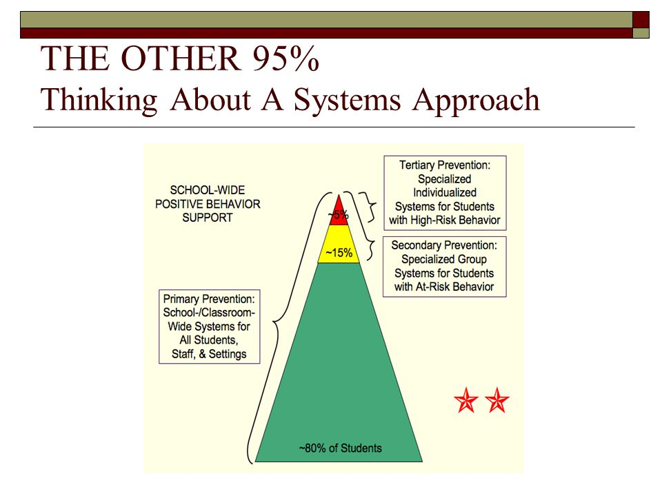 THE OTHER 95% Thinking About A Systems Approach