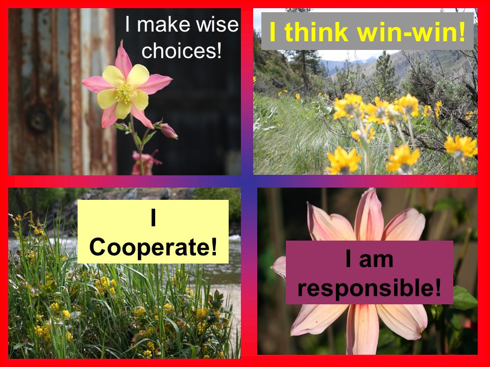 I make wise choices! I think win-win! I Cooperate! I am responsible!