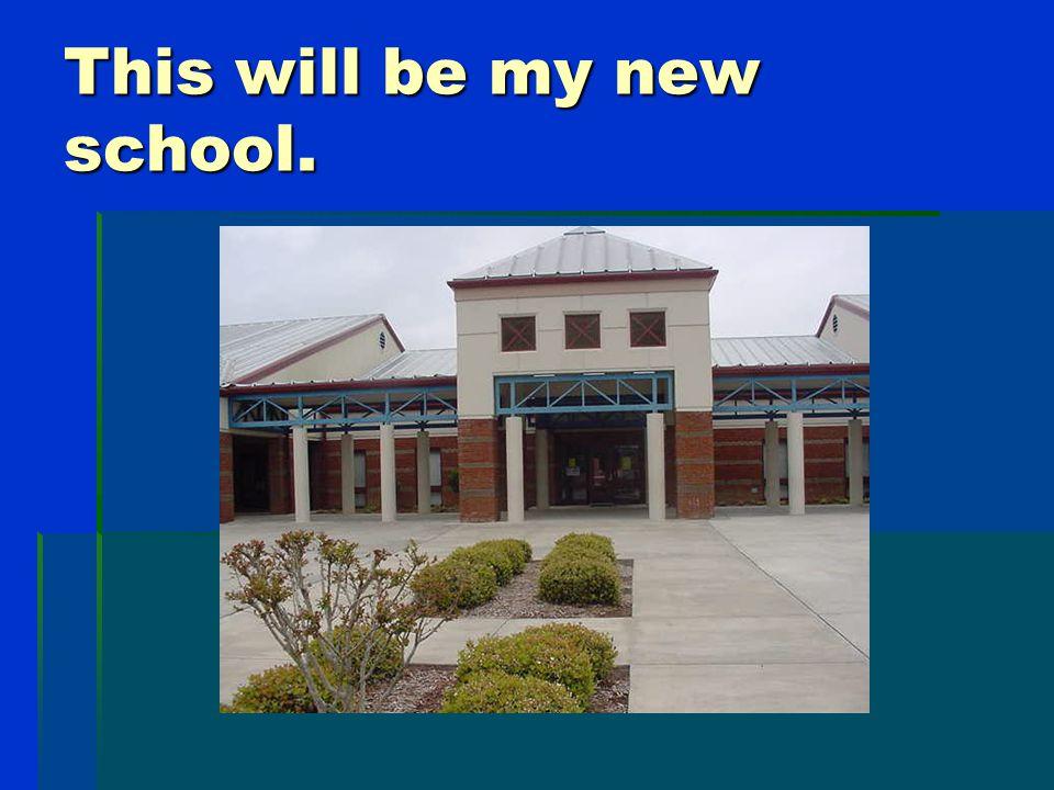 Molly's New School Bethel Elementary