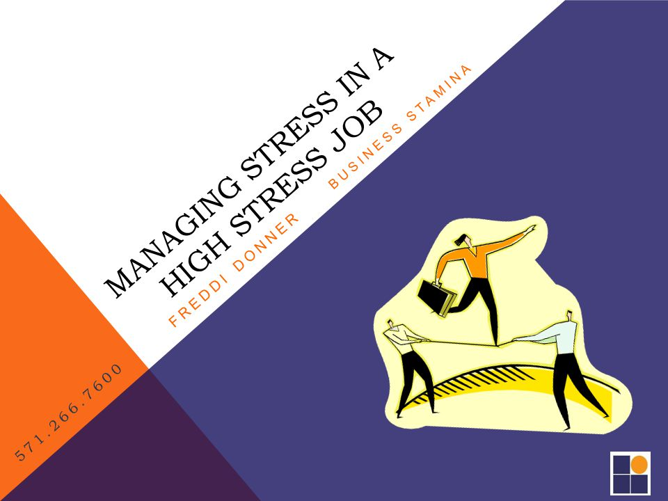 YOUR STRESS CYCLE….