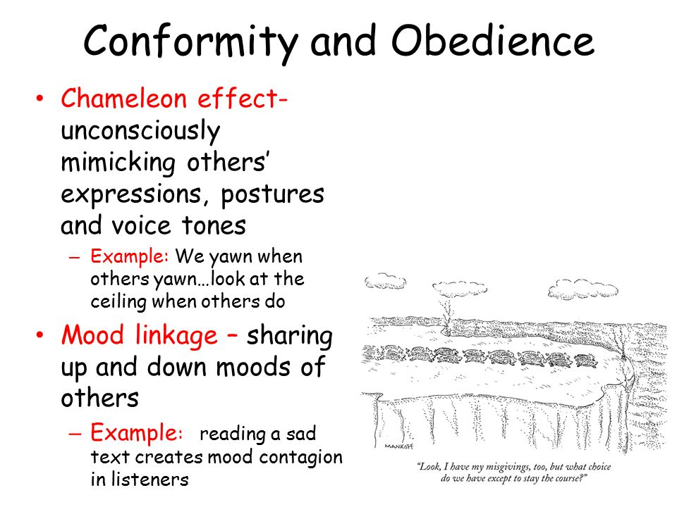 Conformity and Obedience Chameleon effect- unconsciously mimicking others' expressions, postures and voice tones – Example: We yawn when others yawn…look at the ceiling when others do Mood linkage – sharing up and down moods of others – Example : reading a sad text creates mood contagion in listeners