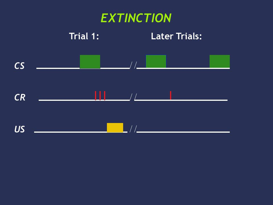 CS CR US EXTINCTION Trial 1:Later Trials: