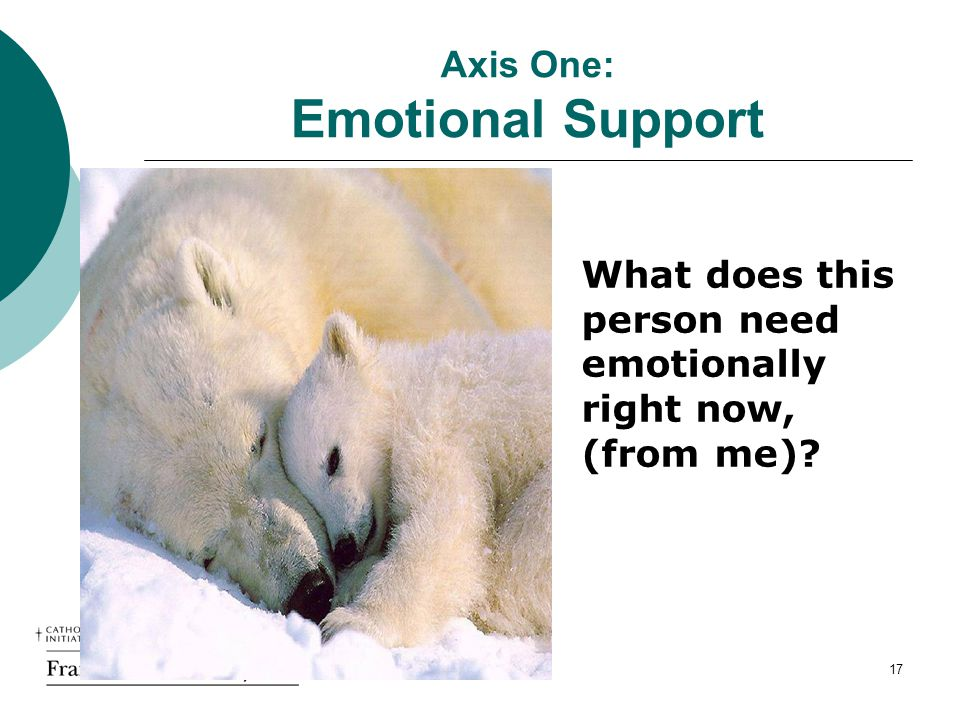 Axis One: Emotional Support What does this person need emotionally right now, (from me) 17