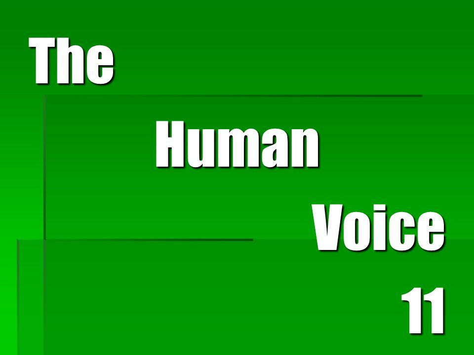 TheHumanVoice11