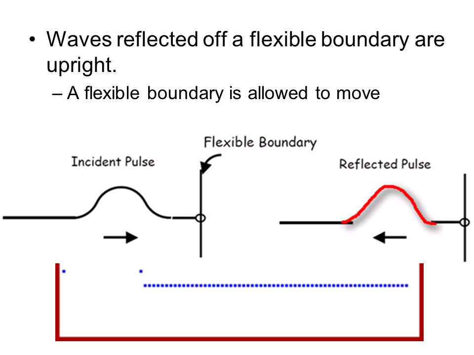 Waves reflected off a flexible boundary are upright. –A flexible boundary is allowed to move