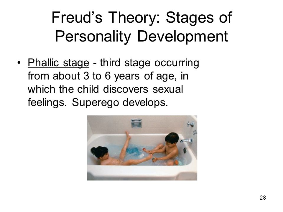 28 Freud's Theory: Stages of Personality Development Phallic stage - third stage occurring from about 3 to 6 years of age, in which the child discover