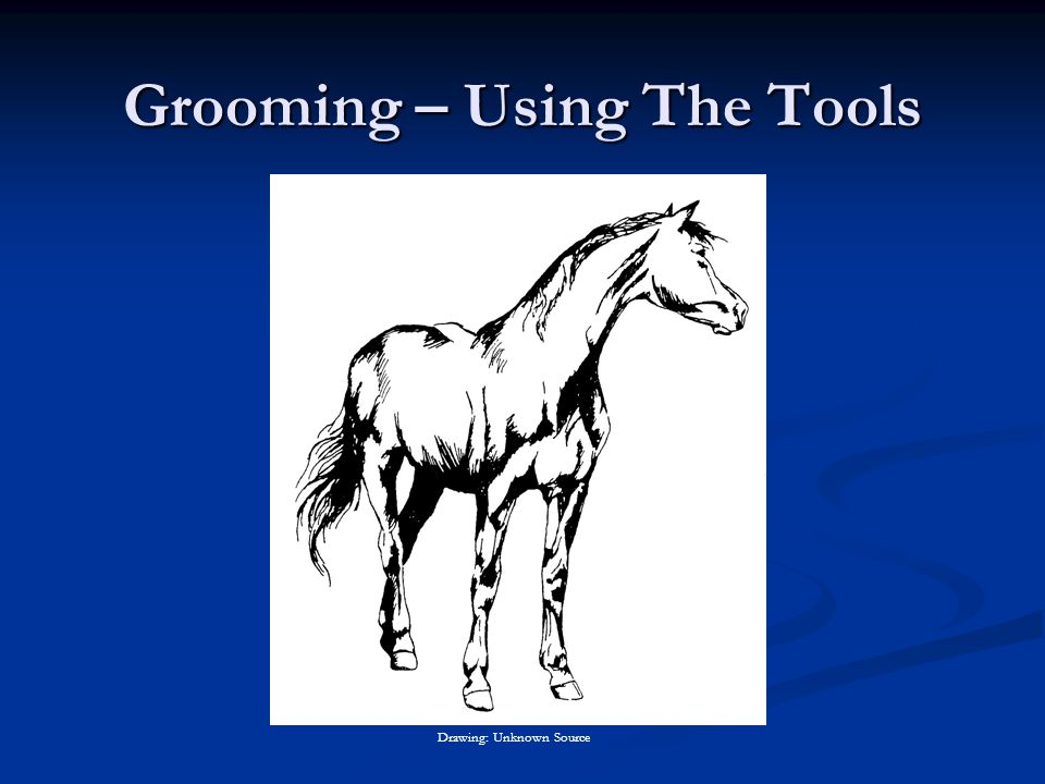 Grooming – Using The Tools Drawing: Unknown Source