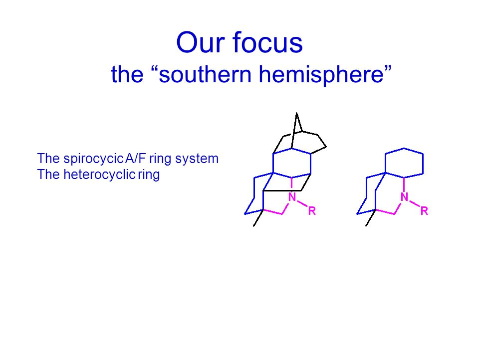 "Our focus the ""southern hemisphere"" The spirocycic A/F ring system The heterocyclic ring"