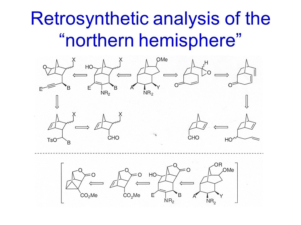 "Retrosynthetic analysis of the ""northern hemisphere"""
